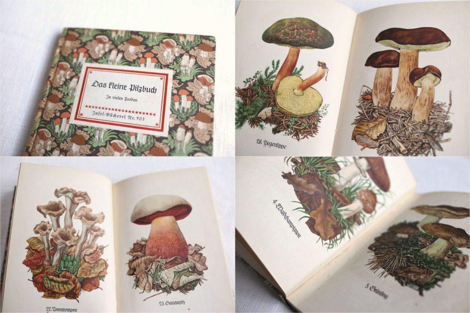 再入荷 Das kleine Pilzbuch インゼル文庫のヴィンテージ本No.503