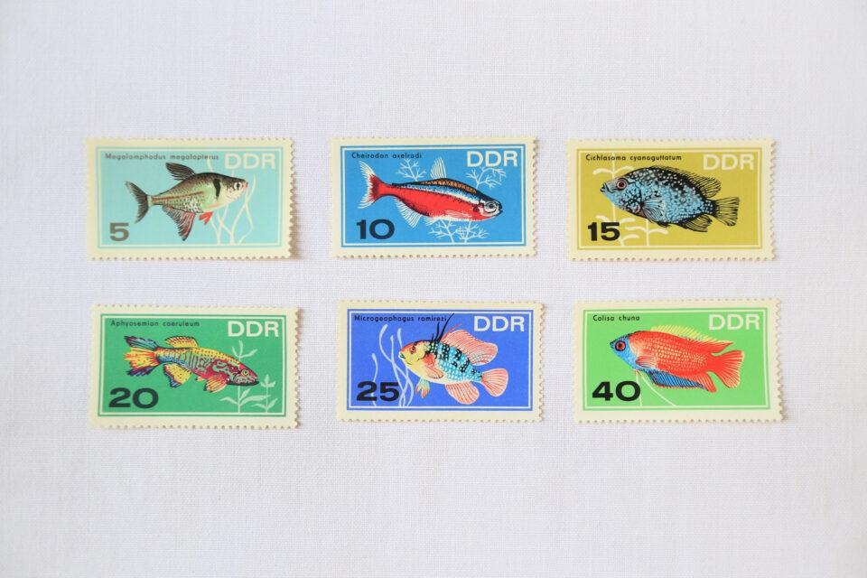 1966年 DDRヴィンテージ切手・熱帯魚